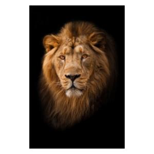 Akoestisch paneel - Lion Dark - HIP&STIJLVOL