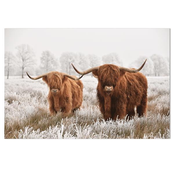 Wandpaneel Schotse Hooglanders winter HIP&STIJLVOL
