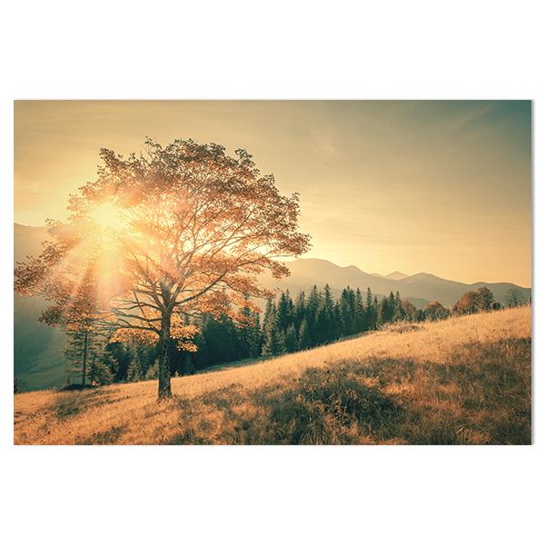 Wandpaneel Zonsondergang