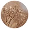 Muurcirkel - Bloemen gedroogd