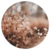 Muurcirkel - Bloemen herfst